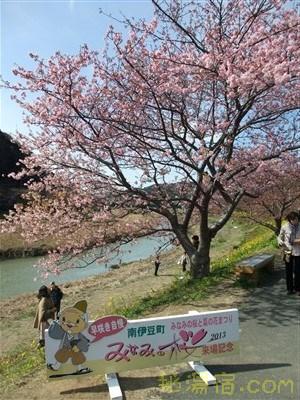 南伊豆湯の花観光交流館19