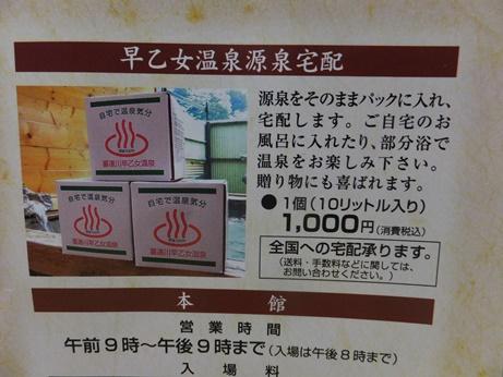早乙女温泉さくらの湯10
