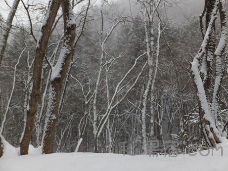 月夜野温泉 三峰の湯9