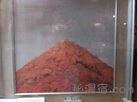 法師温泉長寿館3-136