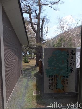 休暇村日光湯元12