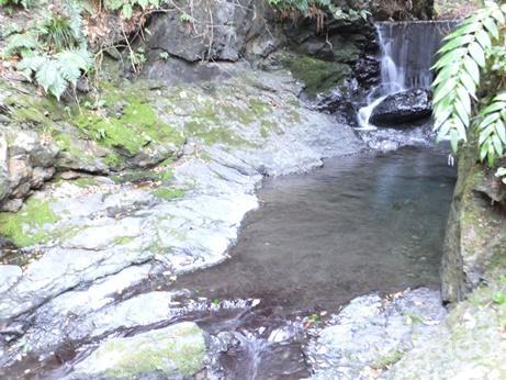 温泉地温泉 滝の湯15