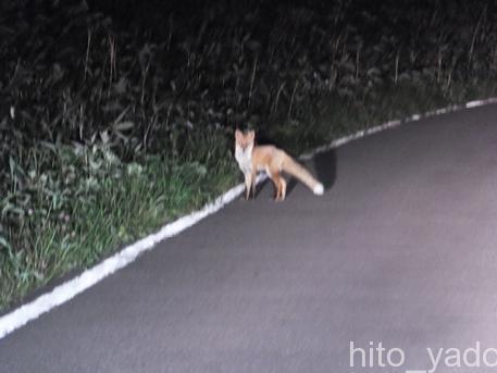 ニセコ五色温泉 ニセコ山の家 素泊まりレポ  ★★★