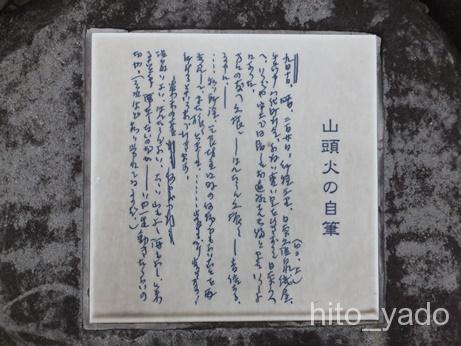 日奈久温泉 金波櫻46