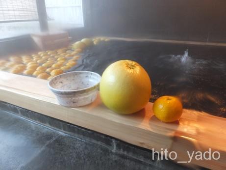 日奈久温泉 金波櫻23