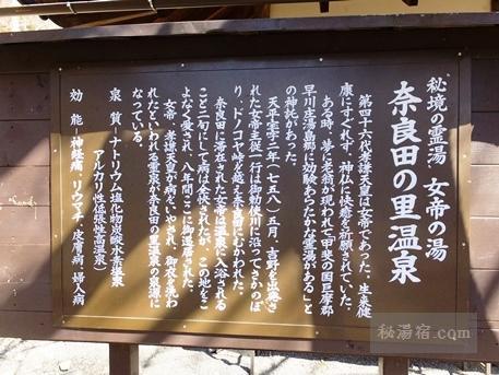 奈良田の里温泉21
