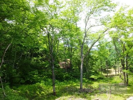 新鹿沢温泉 鹿鳴館27