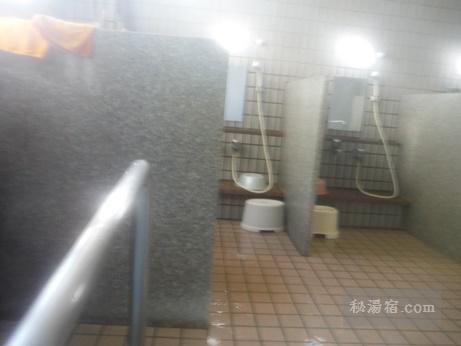 田沢温泉 有乳湯14