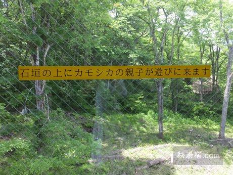 新鹿沢温泉 鹿鳴館21