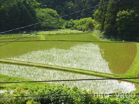 七里川温泉21