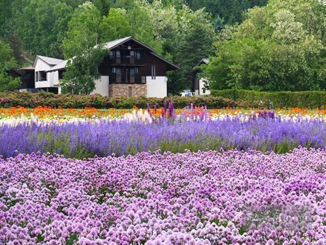 7泊8日 北海道 大雪山 29湯 秘湯巡りの旅 2015初夏