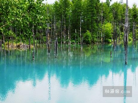 青い池100