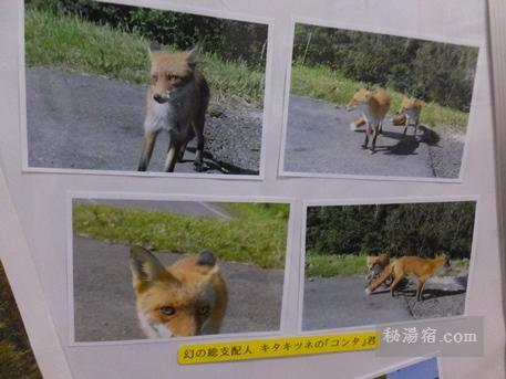十勝岳温泉 カミホロ荘7