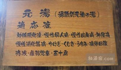 湧駒荘-本館風呂シコロの湯9