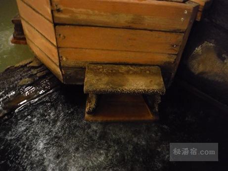 湧駒荘-本館風呂シコロの湯13