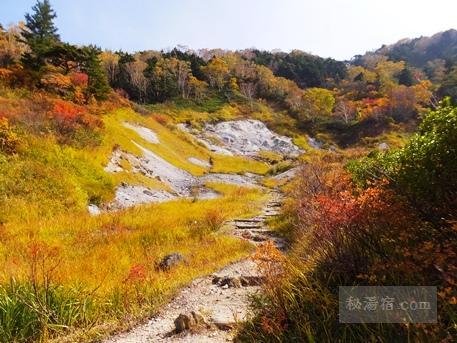蓮華温泉ロッジ-露天風呂36