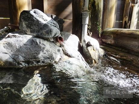 栃尾又温泉 自在館 貸切-うけづの湯7