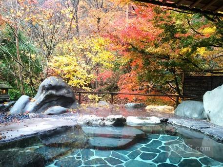 たんげ温泉 美郷館-風呂30