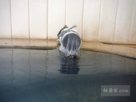 新津温泉21