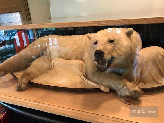 唐沢鉱泉 談話室にある白熊の剥製