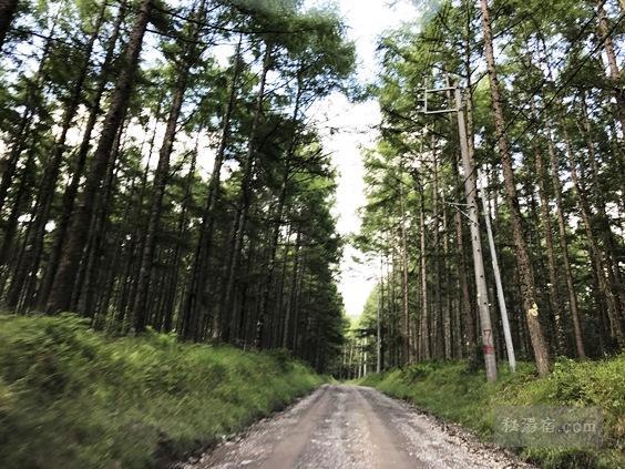 唐沢分岐から唐沢鉱泉に向かう道