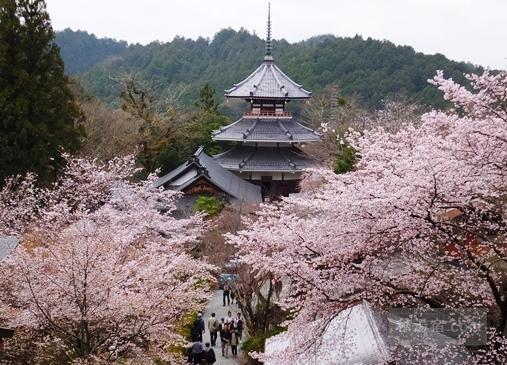 奈良県の混浴のある温泉