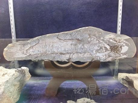 法師温泉長寿館3-128