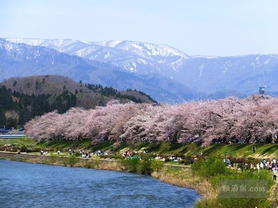お花見ができる 花見露天風呂のある温泉宿