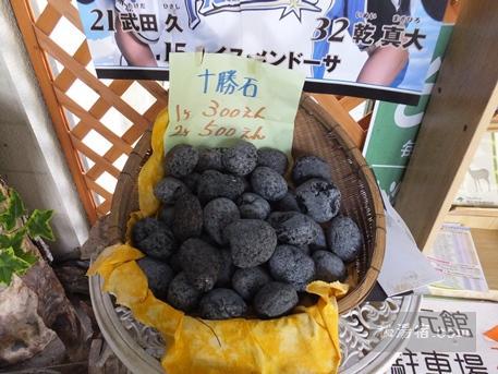 糠平温泉 湯元館5