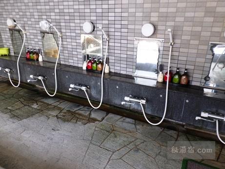 うなぎ湯の宿 琢秀-温泉55